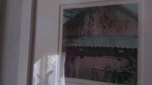 Charlottas fantastic colour Gum Bichromate prints