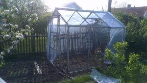 greenhouse taking shape