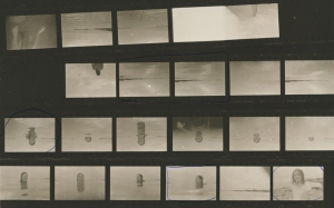 Contact sheet of the first roll we took with my under water camera, now I have 3 more to develop