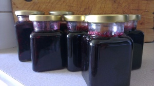 blackberry jelly and marmalade